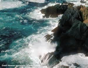 Gwaii haanas photo gallery go haida gwaii