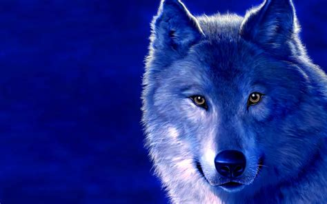 9 best images about wolf the wolf animals dark blue drawed muzzle wolves 1440x900 widescreen wallpapers