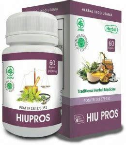 Kapsul Tempuyung Hiu Obat Herbal Atasi Gangguan Ginjal herbal tanaman obat keluarga