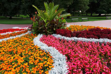 pictures of flower beds flower bed in the park free stock photo public domain