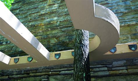 frank lloyd wright tree house frank lloyd wright fallingwater detail with tree edgar j kaufmann house 1937