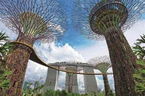 spectacular forest with technological trees gardens by