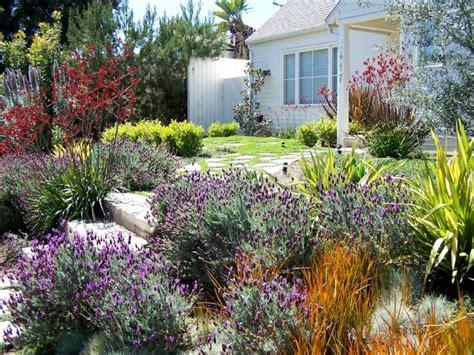 Lavender Garden Ideas 17 Lavender Garden Designs Ideas Design Trends Premium Psd Vector Downloads
