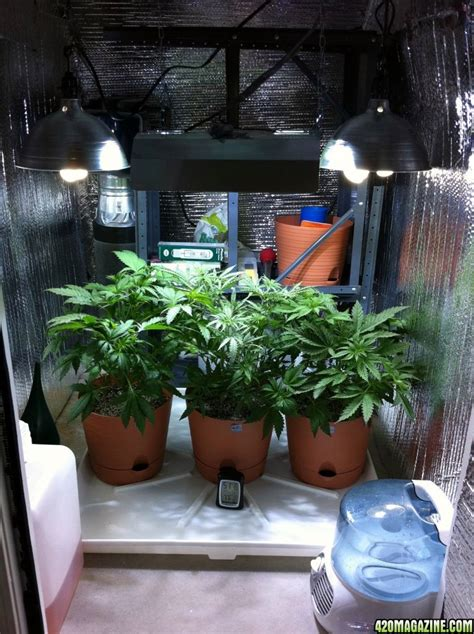 Closet Grow Room Setup by Pretty Stealthy The Stairs Setup