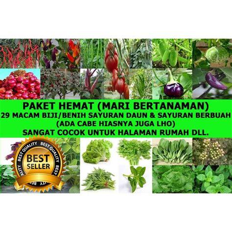 Jenis Bibit Seledri Unggul 1 paket berisi 29 macam biji bibit benih tanaman