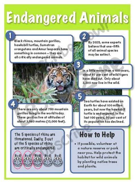 printable endangered animal fact sheets lesson zone au environmental education
