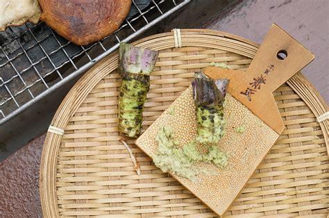 best wasabi the best wasabi in japan amagi wasabi trip out