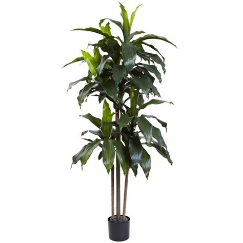 uv plant light home depot nearly natural 5 ft indoor outdoor uv resistant dracaena