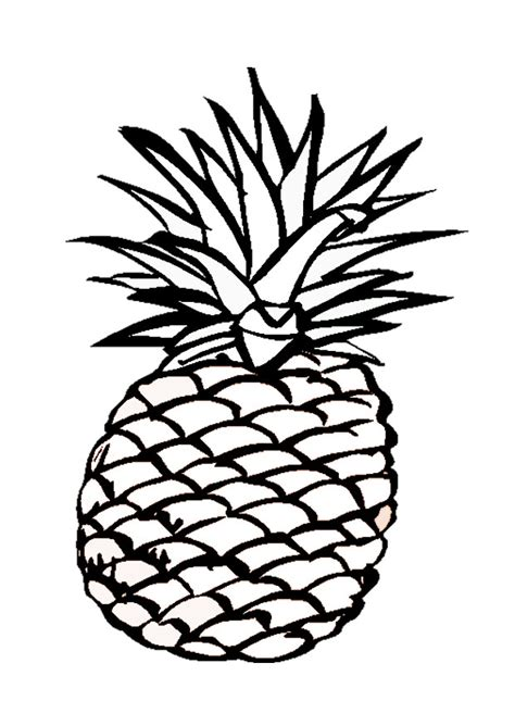 Pineapple Clip Art Cliparts Co Pineapple Coloring Page