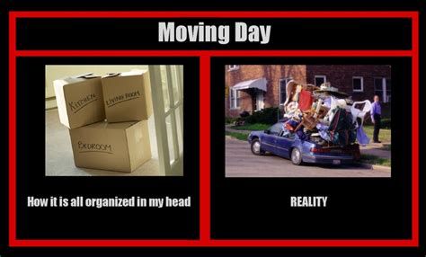 Moving Memes - funny moving day memes for sanity s sake