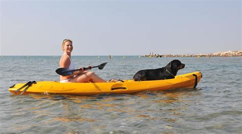 dog vs boat best kayak for dogs 2018 top rated dog friendly kayaks