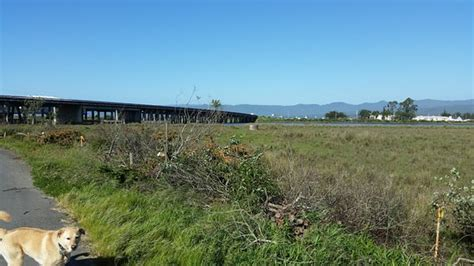 finding in eureka california resort to volume 4 books shoreline rv park updated 2017 cground reviews