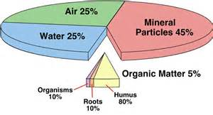 Figure 10t 1 most soils contain four basic components mineral