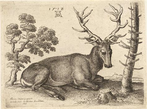 file wenceslas hollar a stag lying after d 252 rer jpg