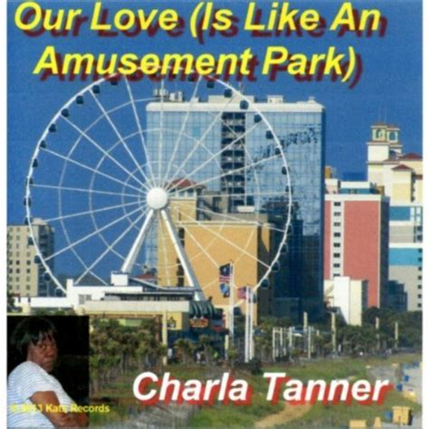 theme park gift vouchers our love is like an amusement park by charla tanner on