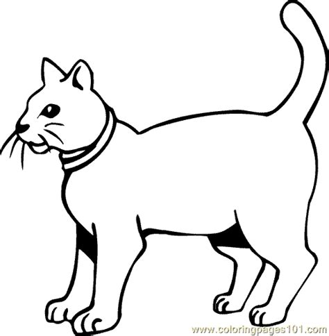 cat coloring pages online free cat coloring page 25 coloring page free cat coloring
