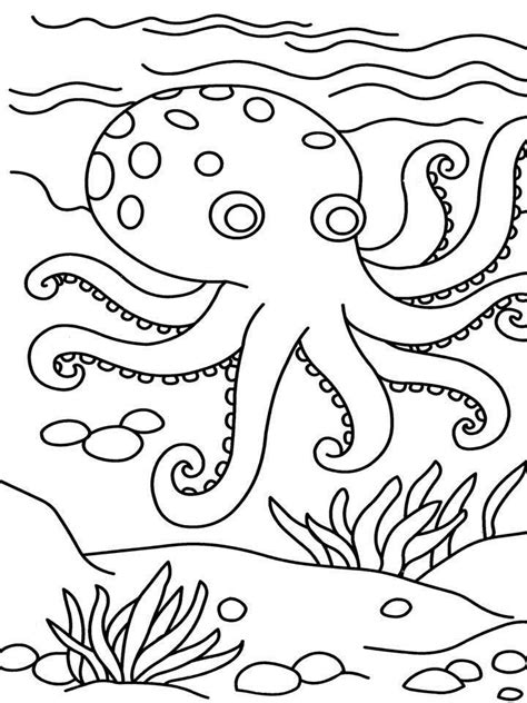 coloring book jumbo coloring book of 100 pages of magnificent landscapes gardens animals flowers and much more for mindfulness and stress relief coloring books books printable coloring pages coloring home