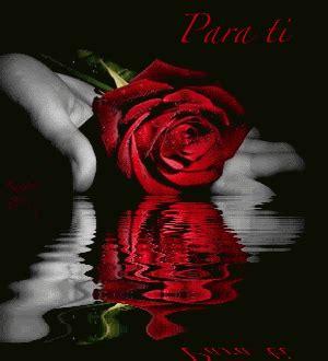 imagenes con movimiento de rosas rojas hermosas im 225 genes de rosas reflejadas en el agua