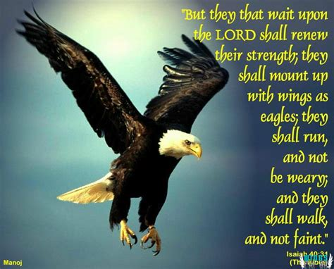 Fly As An Eagle gospel verse photo biblical images frompo