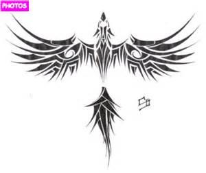 tribal phoenix tattoo designs phoenix tattoo