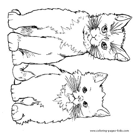 animal coloring pages kitten two cute cats color page