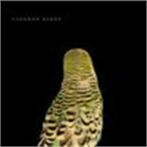 andrew bird armchair apocrypha andrew bird armchair apocrypha glorious noise