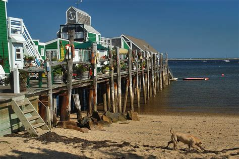 cape cod provincetown provincetown cape cod search in pictures