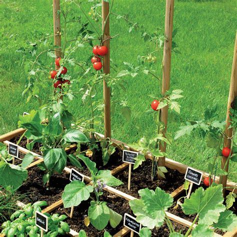 Carrã Potager Tomates Un Potager Pour Votre Balcon La Solution Id 233 Ale Du Carr 233