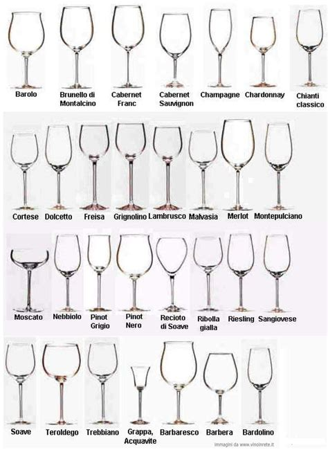 barware glasses types types of wine glasses and their uses about glass