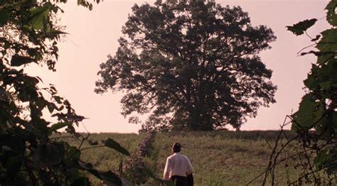 shawshank redemption tree north west
