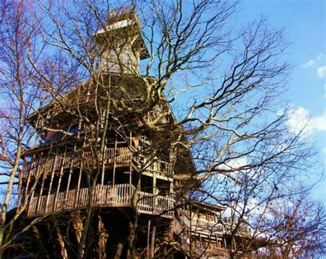 buy a tree house tree houses to buy design of your house its good idea for your life