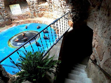 forestiere underground gardens an endangered species