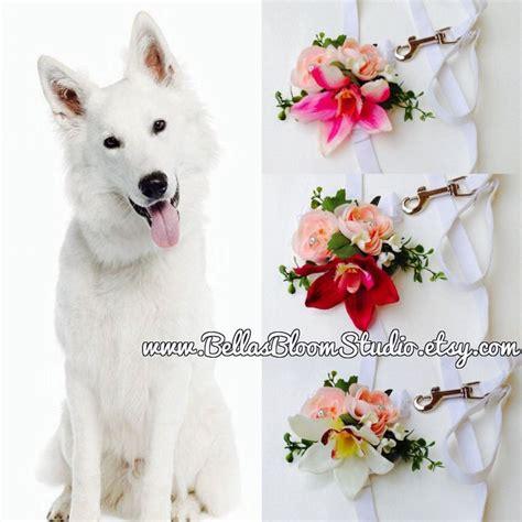 Wedding Attire Dogs by 25 Best Ideas About Wedding Attire On