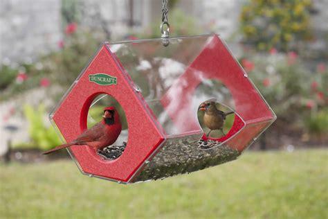 cardinal bird seed bird cages