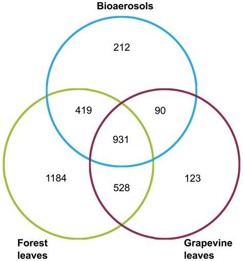 venn diagram geometry definition venn diagrams printable diagram site