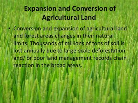 pattern of agriculture and types of forest in bangladesh effects of modern agriculture