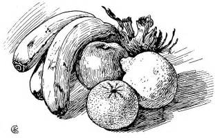 pen drawing of fruit drawing by