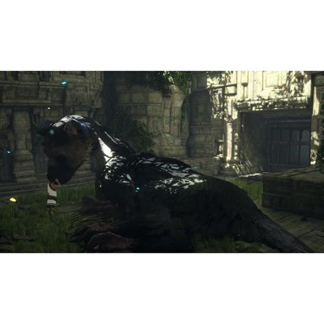 Sony Ps4 The Last Guardian the last guardian ps4