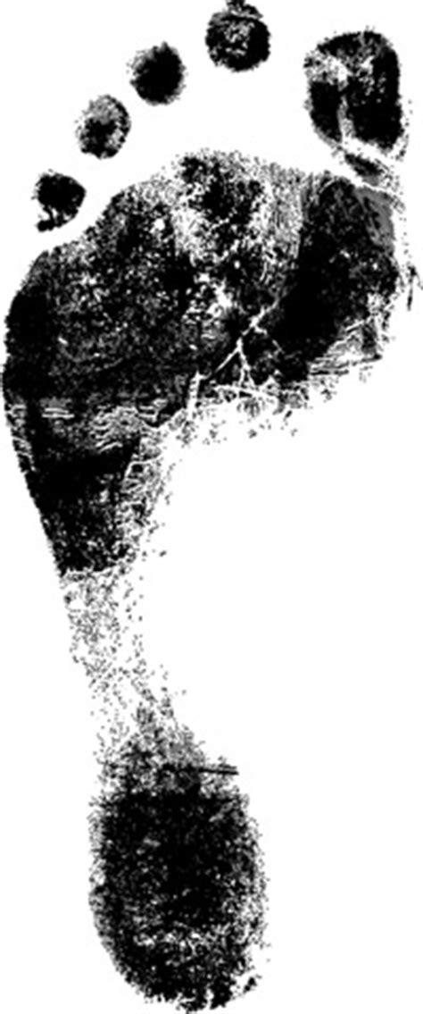 how carbon footprints work | howstuffworks