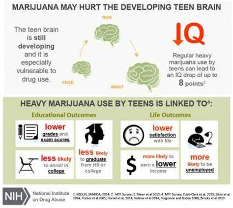 Heavy Marijuana User Detox by Lets Be Clear Ga Marijuana And Outcomes