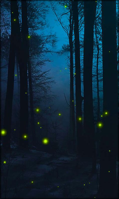 android themes live wallpaper fireflies live wallpaper free android live wallpaper