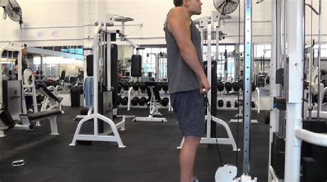 cable shrug exercise guide bodybuilding wizard