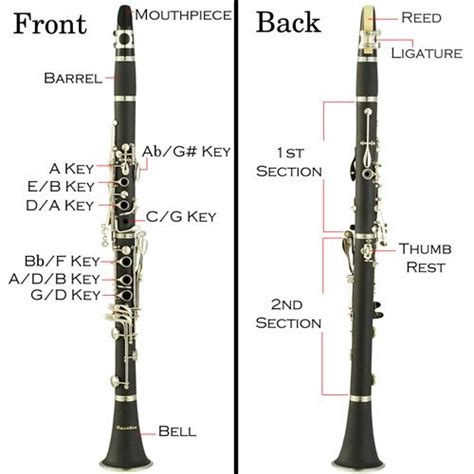 diagram of clarinet clarinet diagram plus the basics on how to get started