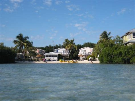 view from the kayak to conch key cottages beach picture