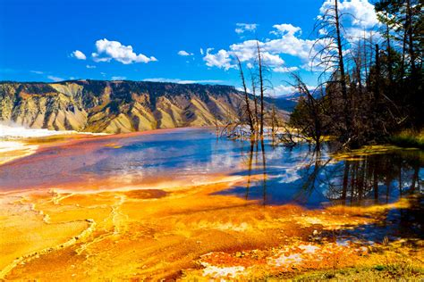 desktop wallpaper yellowstone park yellowstone national park hd wallpapers