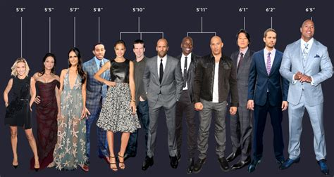 bollywood actress real height list the true height of fast and furious actors in one helpful