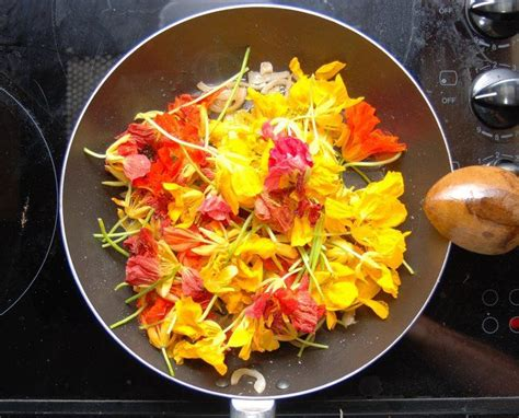 flower food 42 flowers you can eat treehugger