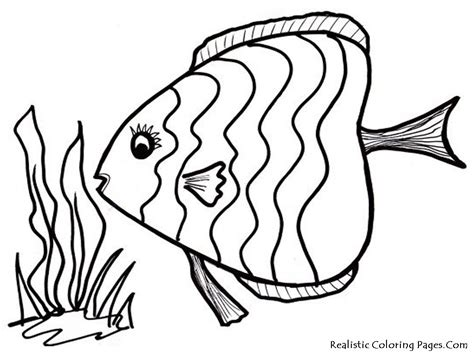 Free Printable Fish Coloring Pages by Coloring Pages Fish Coloring Pages Fish Coloring Pages