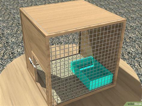 come fare una gabbia per conigli come costruire una gabbia per conigli 10 passaggi