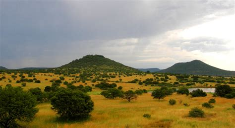 Landscape For Sale South Africa File Upland South Africa Savanna Jpg Wikimedia Commons